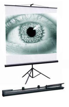 Экран для проектора настенный 180*180 SGM-1103 Redleaf Уценка!